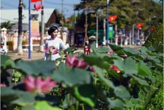 Thành phố xanh Cao Lãnh
